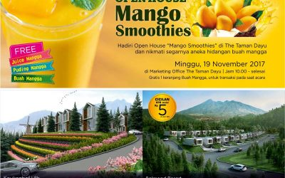 Open House Mango Smoothies